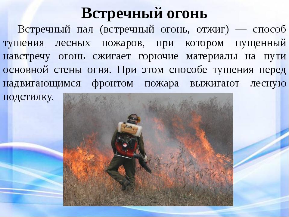 Встречный огонь Встречный пал (встречный огонь, отжиг) — способ тушения лес...
