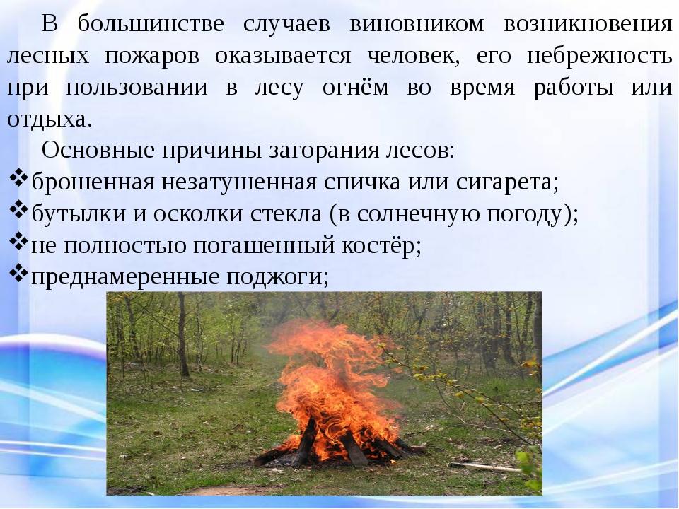 В большинстве случаев виновником возникновения лесных пожаров оказывается ч...