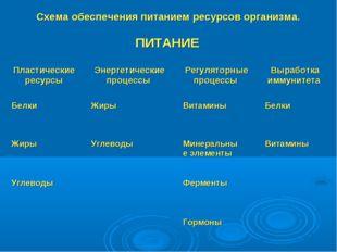 Схема обеспечения питанием ресурсов организма.