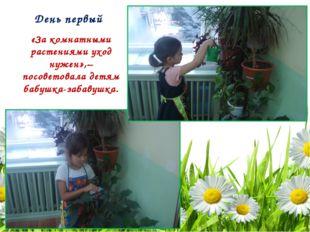 День первый «За комнатными растениями уход нужен»,– посоветовала детям бабушк
