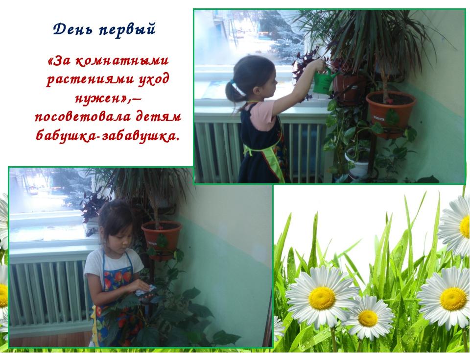 День первый «За комнатными растениями уход нужен»,– посоветовала детям бабушк...