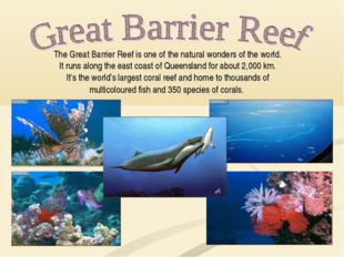 The Great Barrier Reef is one of the natural wonders of the world. It runs al