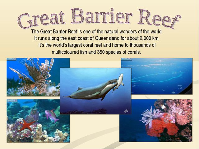 The Great Barrier Reef is one of the natural wonders of the world. It runs al...