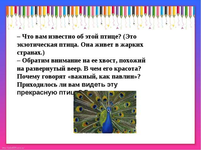 – Что вам известно об этой птице? (Это экзотическая птица. Она живет в жарких...