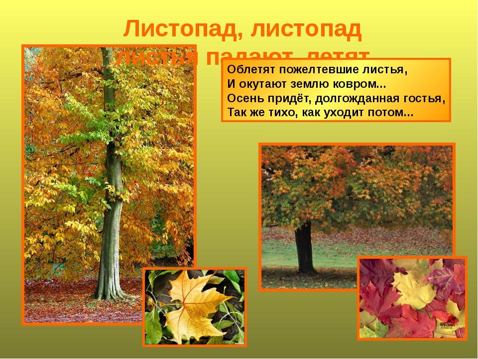 Листопад, листопад листья падают, летят Облетят пожелтевшие листья, И окутают...