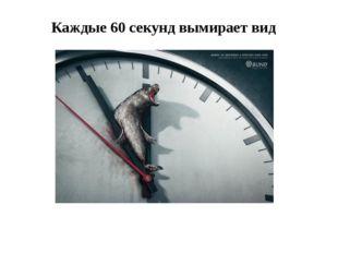 Каждые 60 секунд вымирает вид