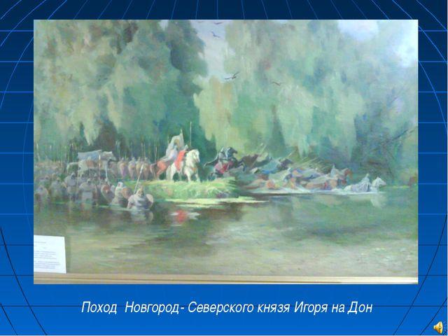 Поход Новгород- Северского князя Игоря на Дон