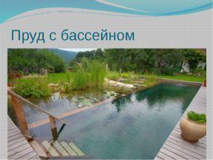 Пруд с бассейном