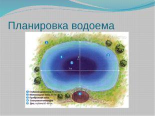 Планировка водоема