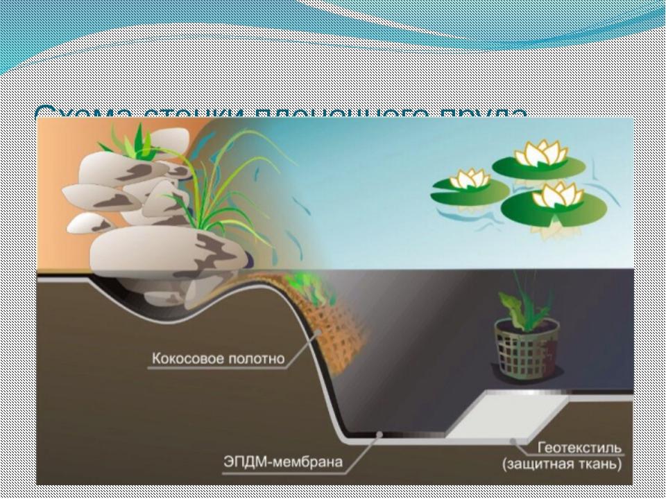 Схема стенки пленочного пруда