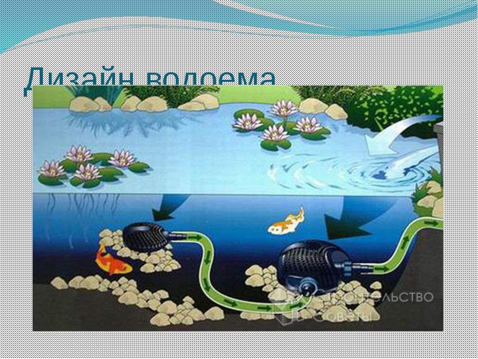 Дизайн водоема