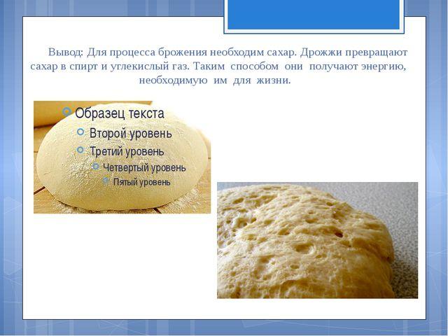 Вывод: Для процесса брожения необходим сахар. Дрожжи превращают сахар в спирт...