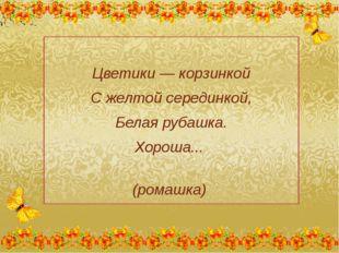 Цветики — корзинкой С желтой серединкой, Белая рубашка. Хороша... (ромашка)