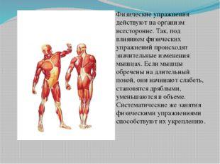 Физические упражнения действуют на организм всесторонне. Так, под влиянием ф