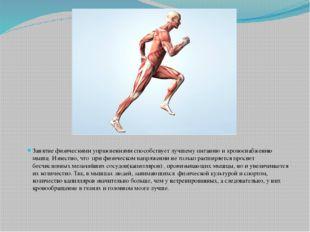 Занятие физическими упражнениями способствует лучшему питанию и кровоснабжен
