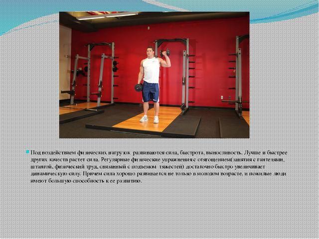 Под воздействием физических нагрузок развиваются сила, быстрота, выносливост...