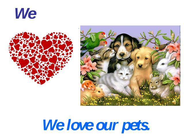 We We love our pets.