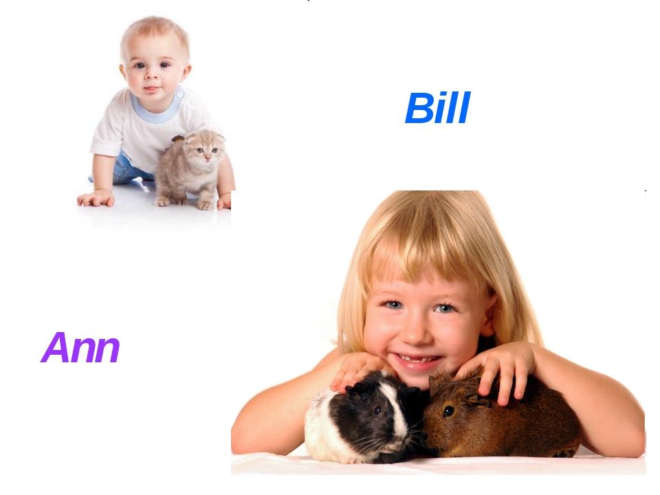 Bill Ann