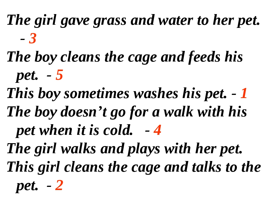 The girl gave grass and water to her pet. - 3 The boy cleans the cage and fee...
