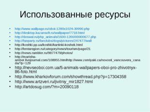 Использованные ресурсы http://www.wallpage.ru/oboi-1280x1024-30990.php http:/