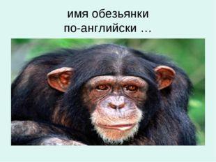 имя обезьянки по-английски …