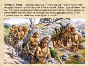 НЕАНДЕРТАЛЕЦ – «человек разумный», Homo sapiens . Скелетные остатки неандерта