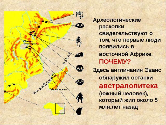 Археологические раскопки свидетельствуют о том, что первые люди появились в в...