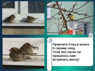 Приучите птиц в мороз К своему окну, Чтоб без песен не пришлось нам встречать