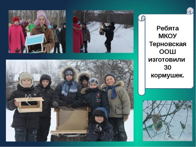 Ребята МКОУ Терновская ООШ изготовили 30 кормушек.