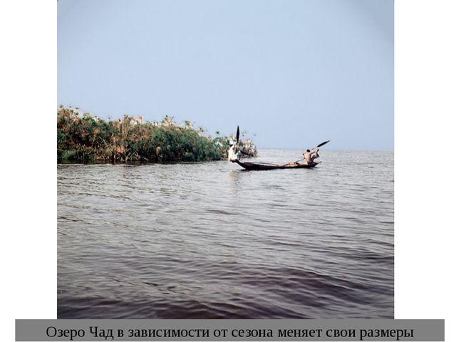 Озеро Чад в зависимости от сезона меняет свои размеры