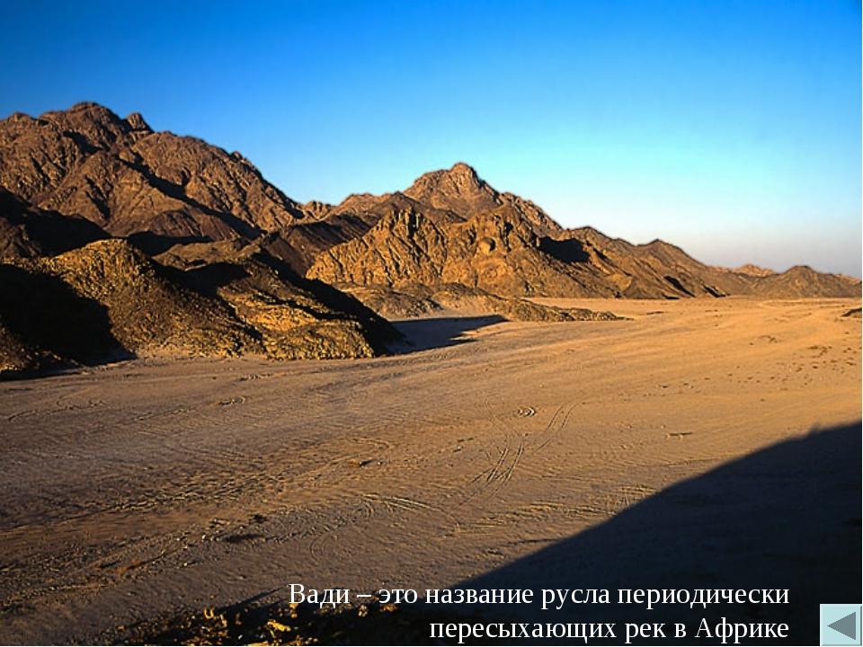 Вади – это название русла периодически пересыхающих рек в Африке