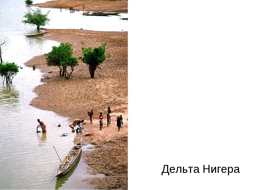 Дельта Нигера