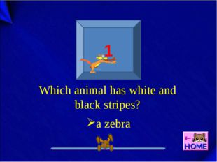 1 Which animal has white and black stripes? a zebra