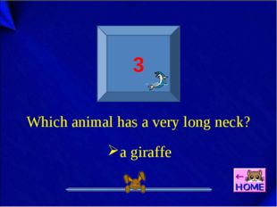 3 Which animal has a very long neck? a giraffe