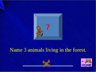 7 Name 3 animals living in the forest.
