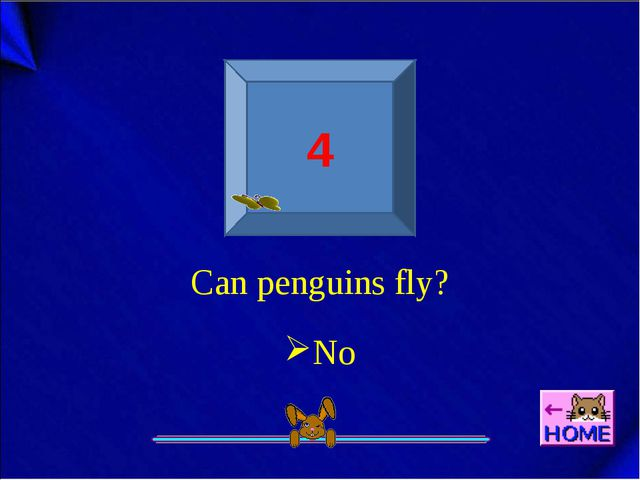 4 Can penguins fly? No