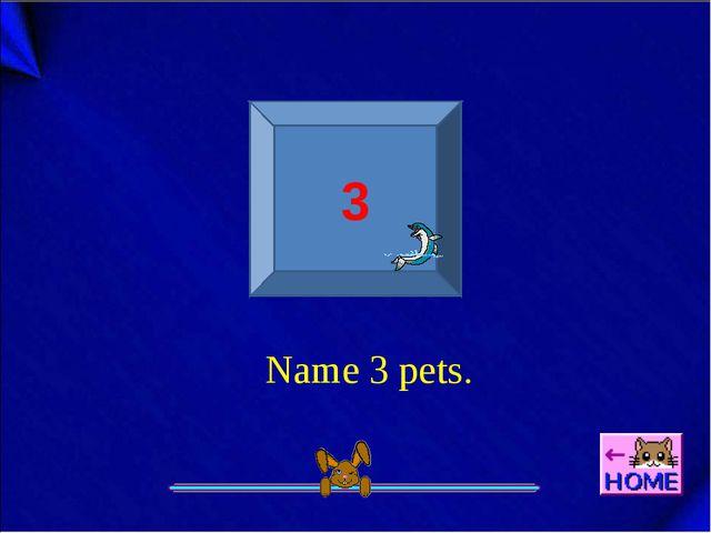 3 Name 3 pets.