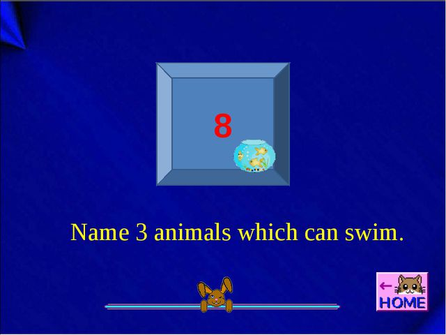 8 Name 3 animals which can swim.