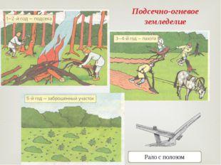 Подсечно-огневое земледелие Рало с полозом 
