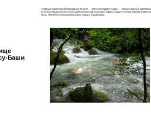 Урочище Карасу-Баши Главный охраняемый природный объект — источник Карасу-Баш