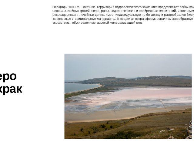 Озеро Чокрак Площадь:1000 га. Заказник. Территория гидрологического заказник...