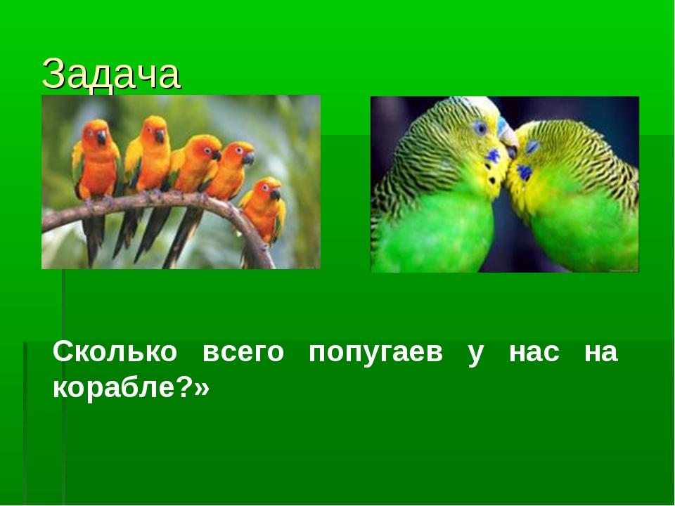 Задача Сколько всего попугаев у нас на корабле?»