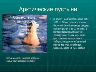Арктические пустыни В длину – до 2-метров, весит 700-1000 кг. Объект охоты –