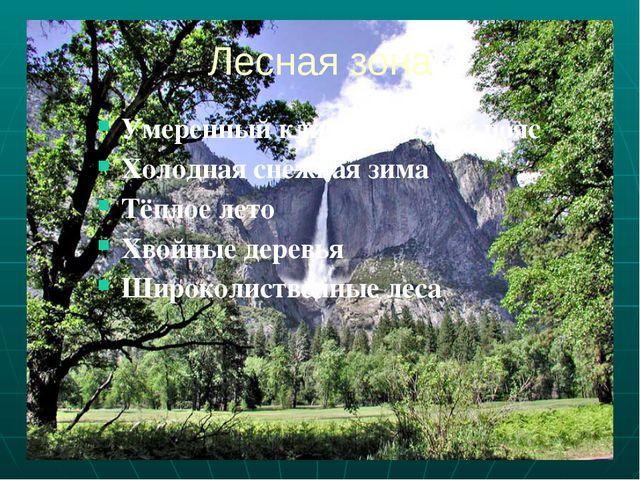 Лесная зона Умеренный климатический пояс Холодная снежная зима Тёплое лето Хв...