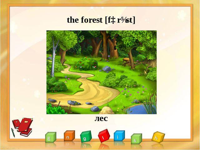 the forest [fɒrɪst] лес