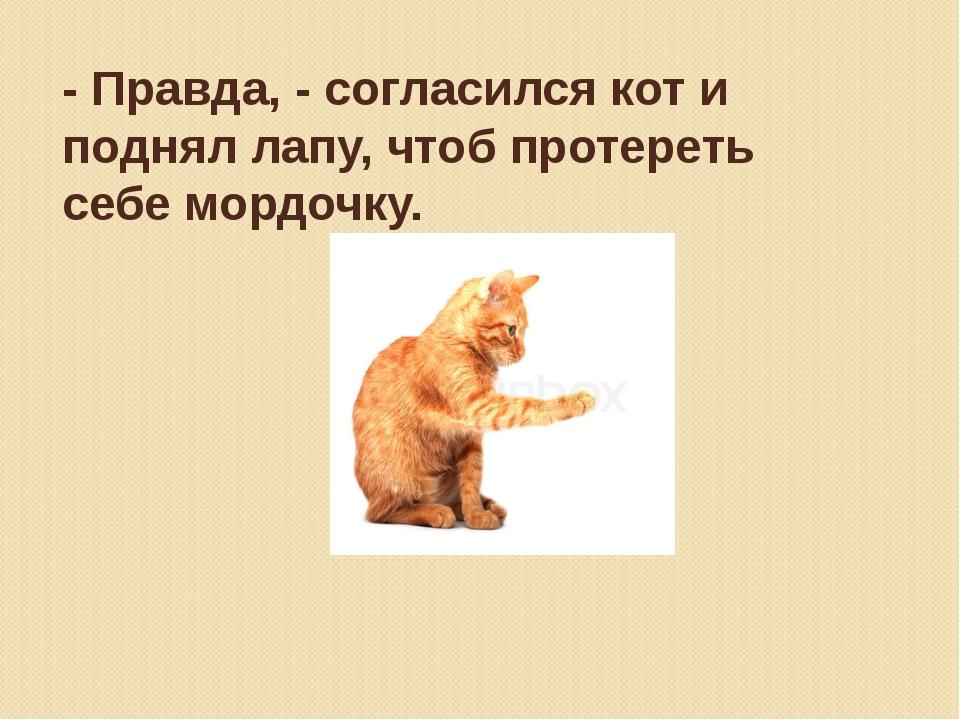 - Правда, - согласился кот и поднял лапу, чтоб протереть себе мордочку.
