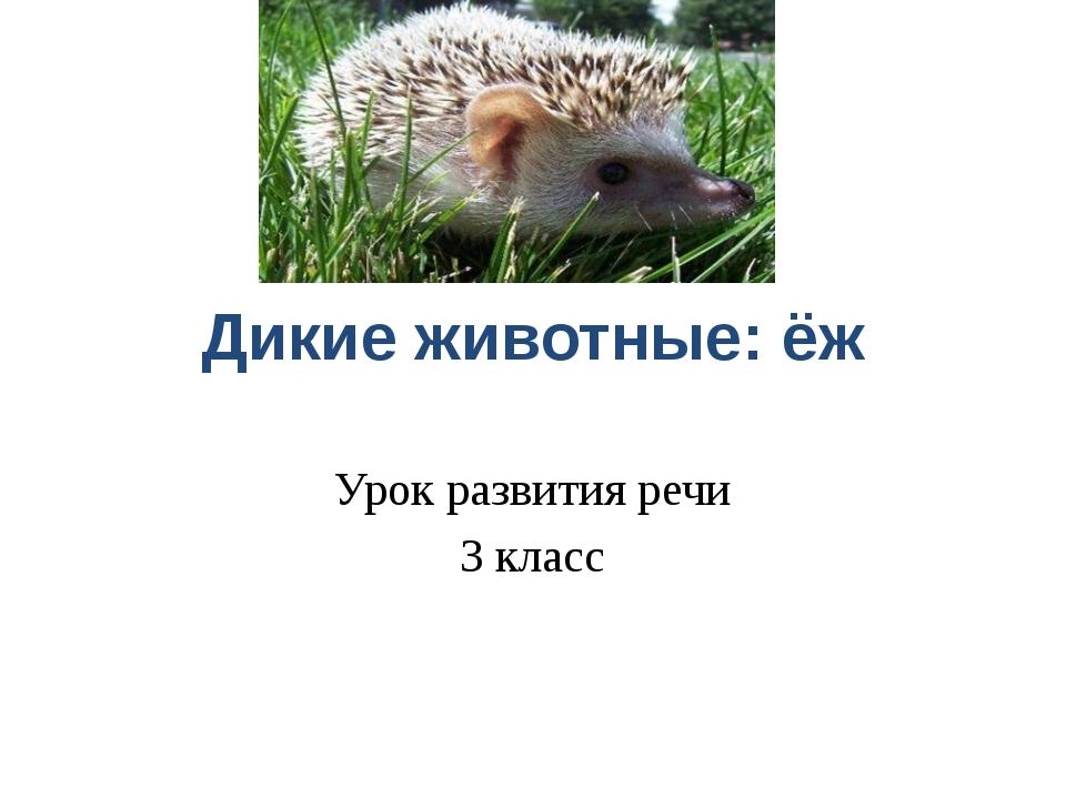 Дикие животные: ёж Урок развития речи 3 класс