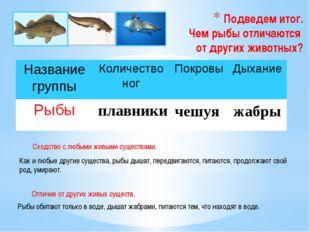 Подведем итог. Чем рыбы отличаются от других животных? плавники чешуя жабры К