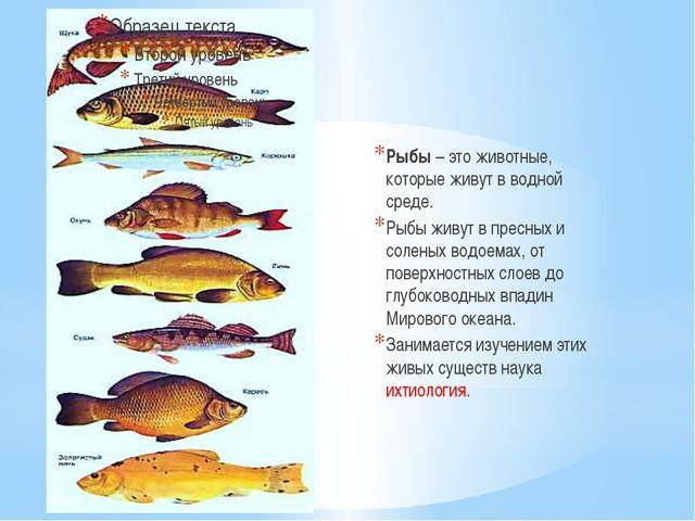 Рыбы – это животные, которые живут в водной среде. Рыбы живут в пресных и сол...