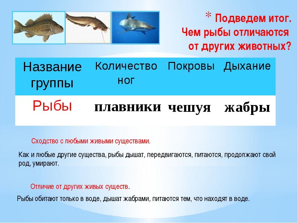 Подведем итог. Чем рыбы отличаются от других животных? плавники чешуя жабры К...